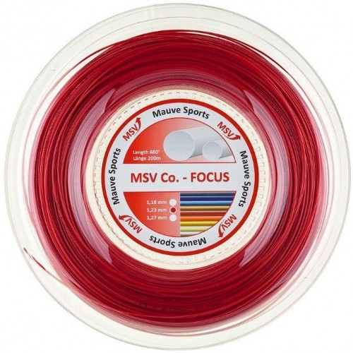 MSV Focus Co.